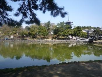 sarusawa.jpg